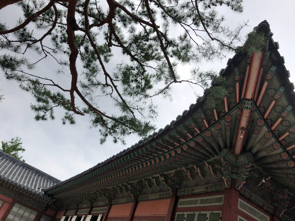 Trees and palaces at the National Palace Museum of Korea